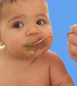 Baby Food Tip