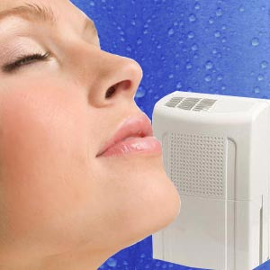 Choosing a Dehumidifier