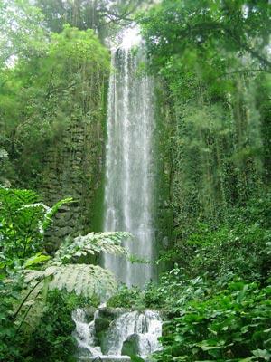 Ecotourism Holidays