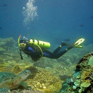 Scuba Diving Vacation