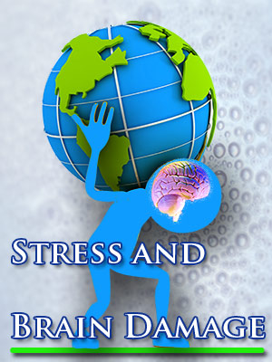 Stress and Brain Damage
