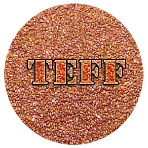 Teff Nutrition