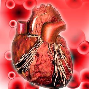 Women Heart Disease Statistics